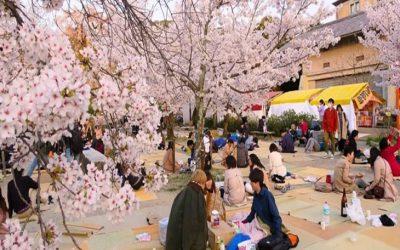 Khám phá các lễ hội độc đáo tại Osaka, Nhật Bản
